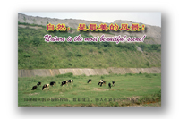 china-028-test-1 copy